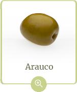 producto-arauco